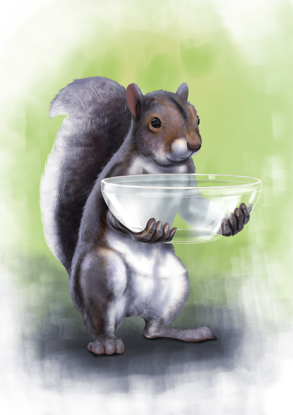 squirrelCandy-revised