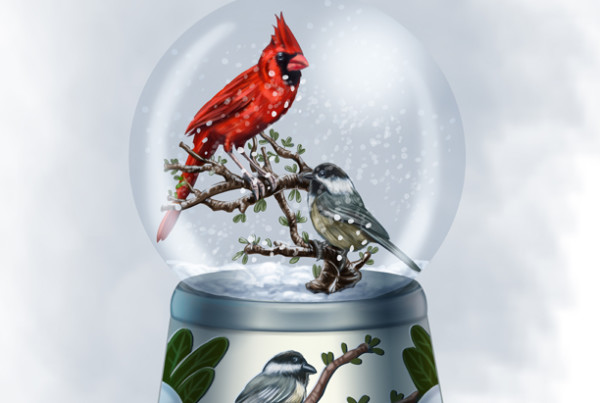 Snow globe of cardinal and a chickadee