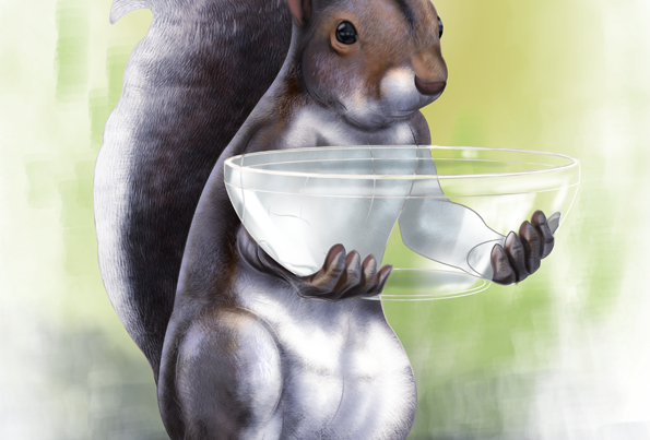 Squirrel candy dish